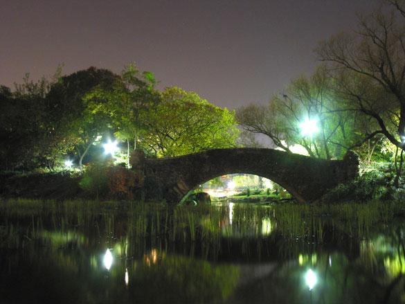 Centralparkbridge