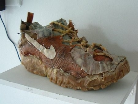 Fleshshoe