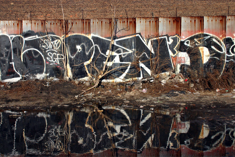 Pen-1-Bronx